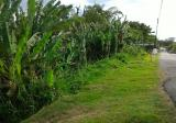 LAND - First Grade FREEHOLD (6 Acres) RESIDENTIAL ZONE Kepala Batas - Property For Sale in Malaysia