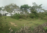 Eco Majestic East Land - Property For Sale in Malaysia