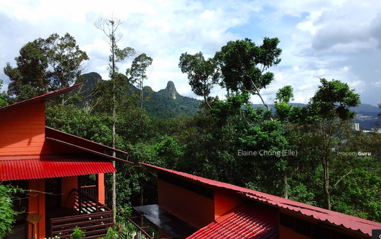Hill resort surrounded by nature (RM70psf)  127953317