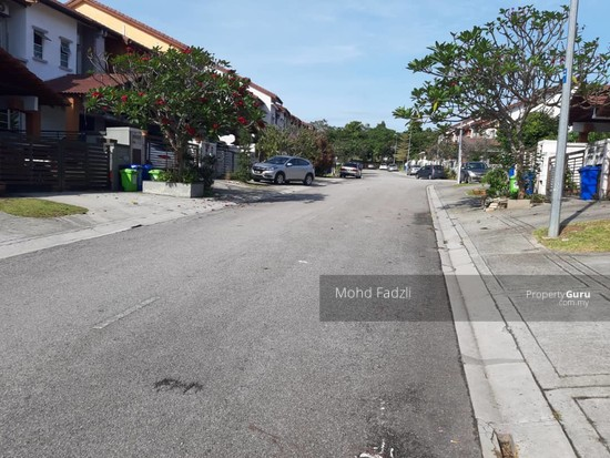 Nerida Denai Alam [End Lot]  143586557