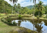 Janda Baik, Pahang - Property For Sale in Malaysia