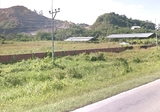 4.88 Acres 1st Lot Native Land (PERPETUITY) @ 15th Mile Kuching  - Property For Sale in Malaysia