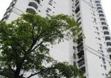 Pandan Ville Condominium - Property For Rent in Malaysia