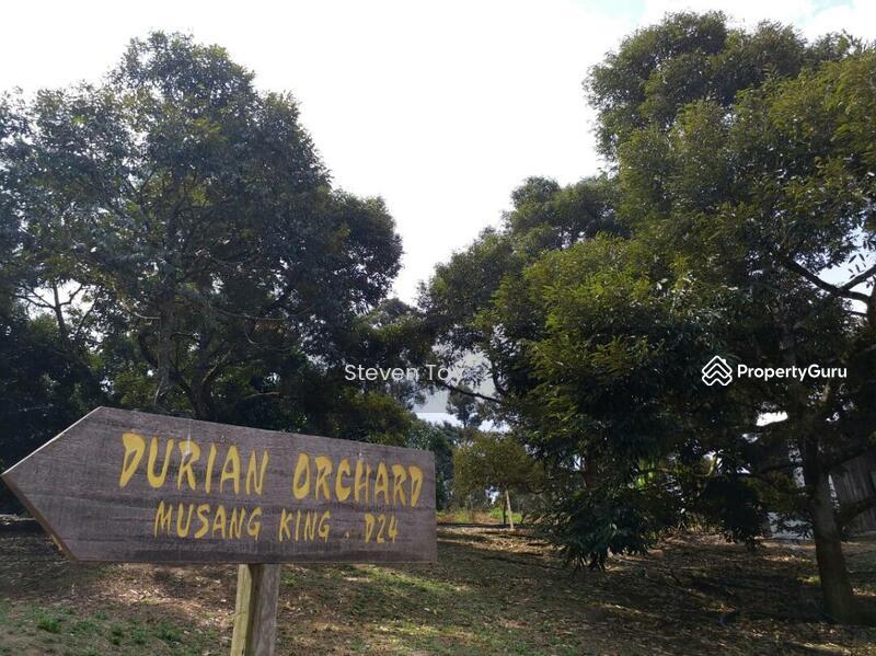 Bentong Land Resort Raub Pahang Bentong Pahang