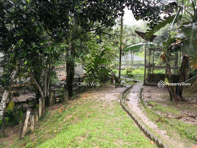 2 acres Agricultural Land with Farm at Janda Baik, Pahang