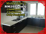 Molek Pine 3