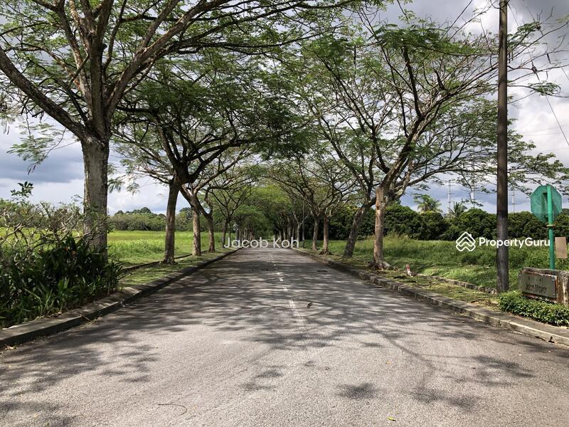 Leisure Farm #156438368