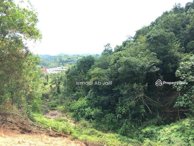 Lavender Heights, Senawang #159687352