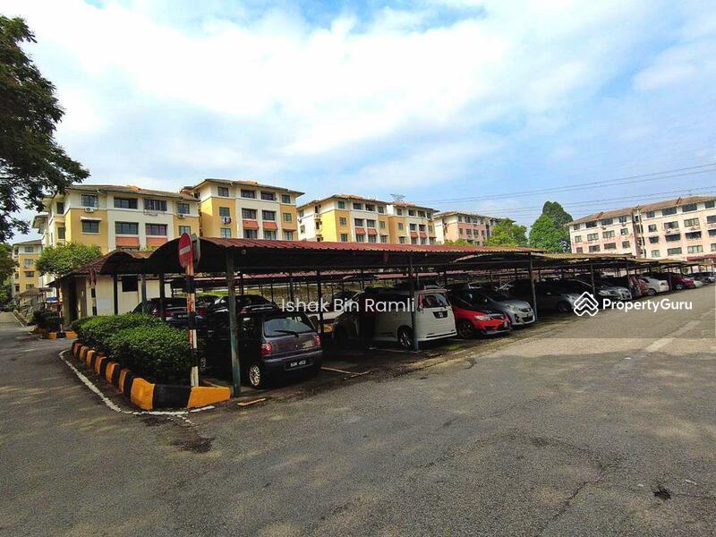 SD Apartments II #161768746