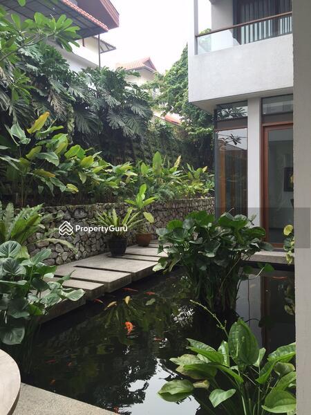 Ampang Ukay Heights #162377418