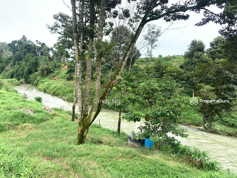 Bentong Karak Agriculture Land #163787026
