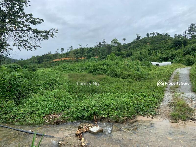 Bentong Karak Agriculture Land #163787034