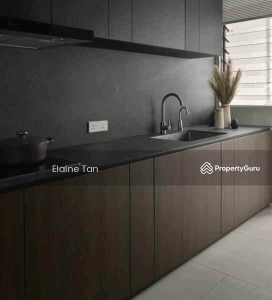 Korea Style Freehold Luxury MRT Condominium #168156636
