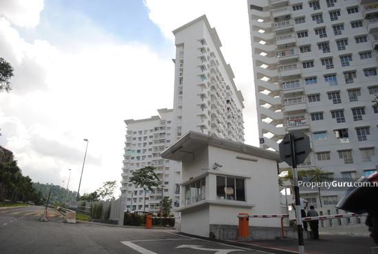 Monte Bayu  557