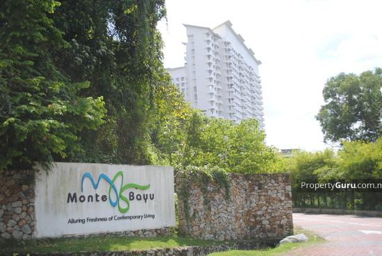 Monte Bayu  558