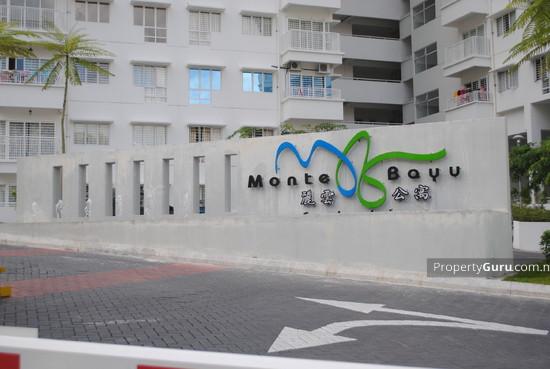 Monte Bayu  559